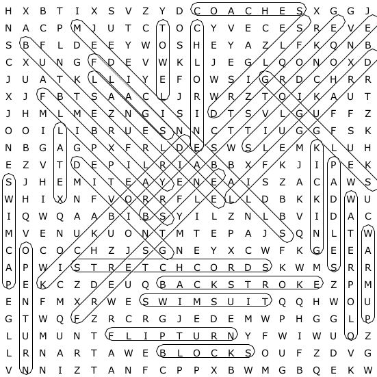 Motion and Force Vocabulary Word Search for Physics | Word search ...